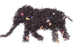Dry tea Stock Photo