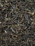 Dry tea leaves Stock Photo