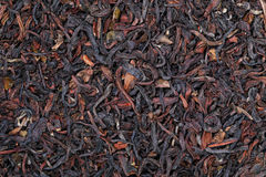 dry tea leaves texture for pattern and background Royalty Free Stock Images