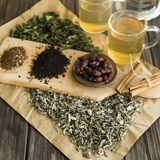 Dry tea, mint and dog-rose Stock Photography