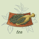 Dry tea and scoop. Illustration with dry tea and wooden scoop Royalty Free Stock Photos
