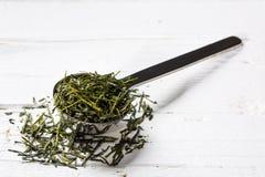 Dry tea on a teaspoon Stock Photography