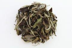 Dry Tea. On a white background Stock Photo
