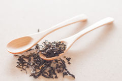 Dry tea and wooden spoons Stock Image