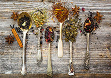 Dry teas on wooden background Royalty Free Stock Photography