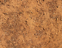 Dry terrain brown soil natural background Stock Photos