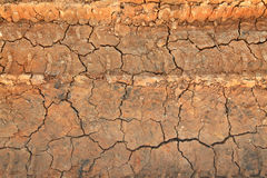 Dry terrain ground. On the field Royalty Free Stock Image
