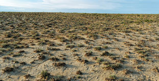 Dry terrain with scrubby vegetation Stock Images