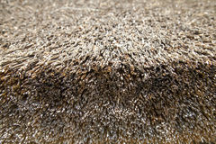 Dry thatch background Stock Photo