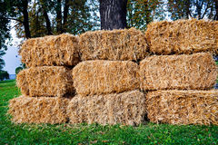 Dry thatch. Thatch on the meadow in bales stock photos