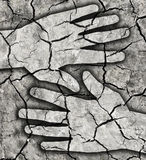 Dry thirsty cracked earth. Stock Image