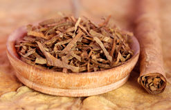 Dry tobacco leaves Royalty Free Stock Photos