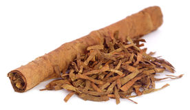 Dry tobacco leaves Stock Images