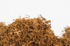 Dry tobacco. Stock Image
