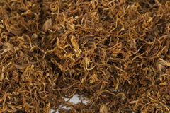 Dry tobacco. Dry tobacco - Stock image macro Royalty Free Stock Image