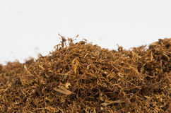 Dry tobacco. Royalty Free Stock Images