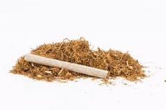 Dry tobacco. Stock Photo