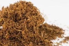 Dry tobacco. Stock Photos
