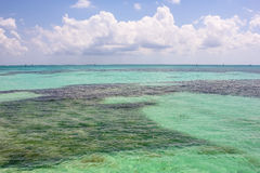 Dry Tortugas tropical sea royalty free stock photography