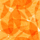 Dry transparent yellow autumn leaves. Seamless vector pattern. Stock Images