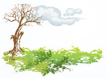 Dry tree with cloud Royalty Free Stock Photo