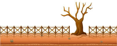 Dry tree with fences along the road Stock Image