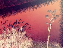 Global warming on planet Earth. Fantasy background. Dry trees, roots, flowers on a red hot background. Global warming on planet Earth. Global warming stock image