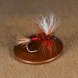 Dry fly for trout flyfishing. Royal Wulff dry fly sitting on a US penny coin Royalty Free Stock Photography