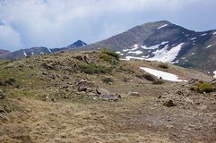 Dry Tundra Royalty Free Stock Images