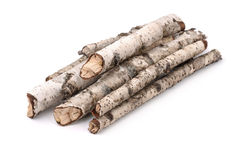 Dry twigs Royalty Free Stock Photos