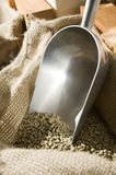 Dry unroasted arabica coffee beans. Dry unroasted coffee beans from Ethiopia, with a metal scoop stuck in the hessian bag Stock Photo