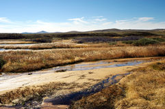 Dry up rivers. Autumn grassland dry up rivers stock photos