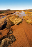 Dry up rivers. Autumn grassland dry up rivers stock photography