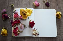 Notebook and dried roses. Stock Photography