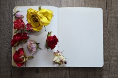 Notebook and dried roses. Royalty Free Stock Image