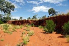 Dry valley in desert - Australia Royalty Free Stock Photo