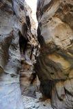 Dry wadi in Jordan desert. Stock Photos