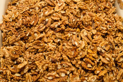 Dry walnuts without shell Royalty Free Stock Photo