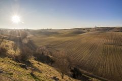Landscape in Castile and Leon, Spain. Dry and warm landscape in winter in the fields of Peleas de Arriba, Province of Zamora, Castile and Leon, Spain Royalty Free Stock Photos