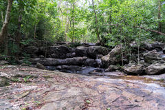 Dry waterfall in deep tropical rain forest in summer Royalty Free Stock Images