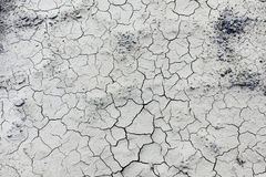 Dry weather. Dry and cracked earth background Stock Photography