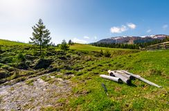 Dry weathered logs in mountainous rural area. In spring. lovely countryside landscape with fence on a grassy slope near the coniferous forest. beautiful Royalty Free Stock Image