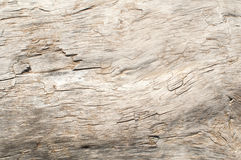 Dry weathered wood surface Stock Photos
