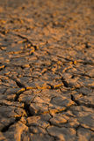 Dry Western soil. stock images