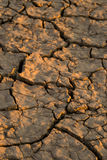 Dry Western soil. Stock Image
