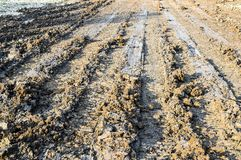 Dry wheel track on dirt soil texture. Close up dry wheel track on dirt soil texture royalty free stock image