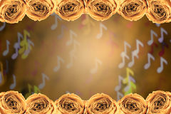 Dry white rose frame on blur note bokeh background Royalty Free Stock Photography