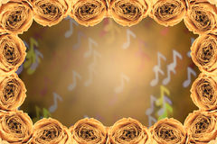 Dry white rose frame on blur note bokeh background Royalty Free Stock Photos