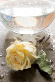 Dry rose on wet background Royalty Free Stock Photography