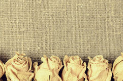 Dry white roses on linen  canvas background Royalty Free Stock Images
